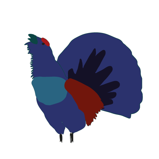 cropped-Urogallo-512px-transp.png